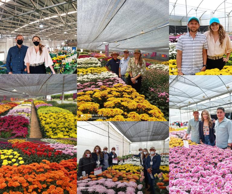 holland-house-estuvo-presente-en-la-semana-del-crisantemo-2021.png