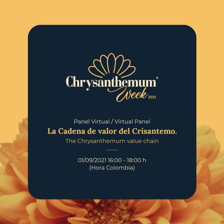 participa-en-el-panel-sobre-la-cadena-de-valor-del-crisantemo-en-el-marco-de-la-semana-del-crisantemo.jpg