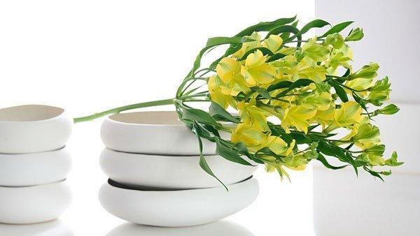 royal-van-zanten-adds-yellow-variety-to-charmelia-series.jpg